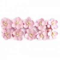 Цветы вишни, набор 10 шт, светло-розовый