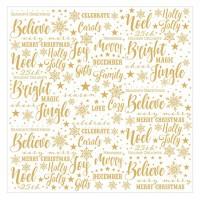Лист оверлея Christmas Joy Acetate от Paper House