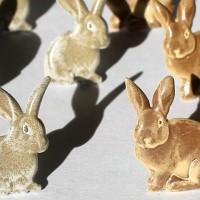 Набор брадс Кролики коричневые от EyeLet OutLet